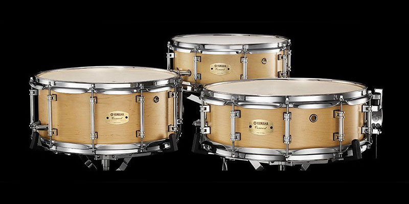 Image for anatomy of a snare drum