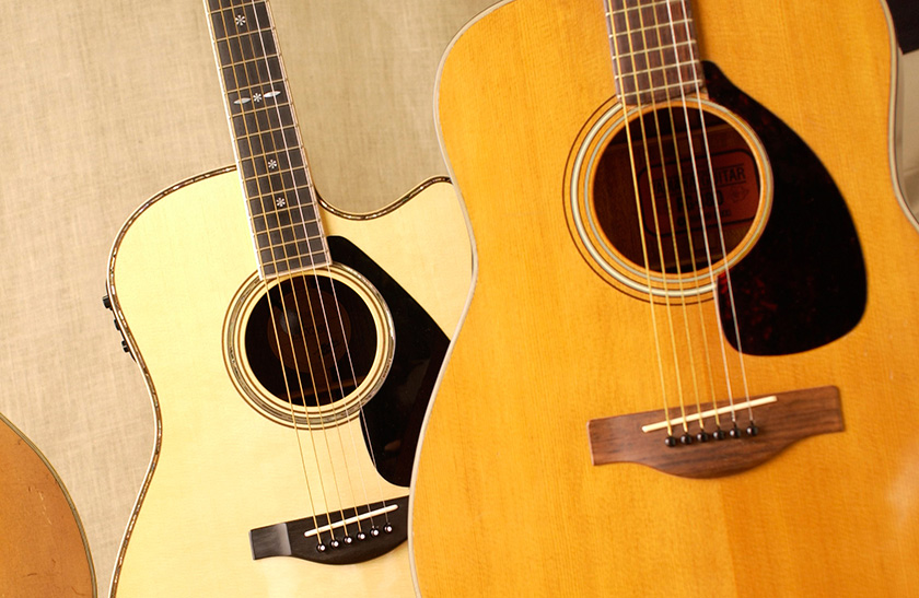 TriviaThe Shape Of The Pick Guard Is Dictated By Manufacturer