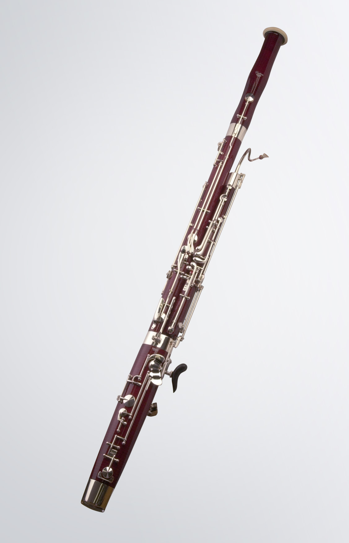 the origins of the bassoon instruments of the bassoon family