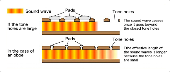 The size of tone holes and sound waves.