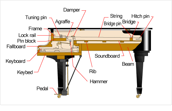 the structure of the piano:the sound-producing mechanism - musical  instrument guide - yamaha corporation  yamaha corporation