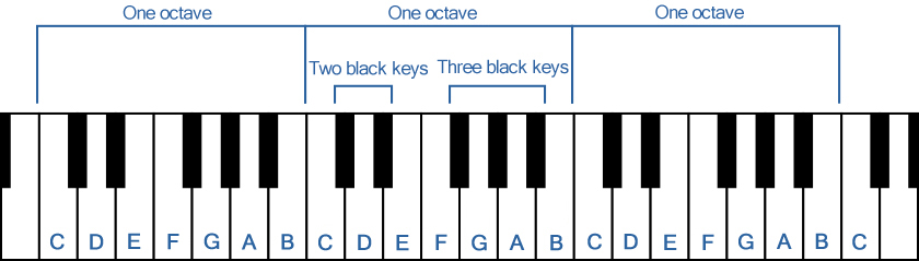 White Keys and Black Keys Laid Out in a Regular Arrangement