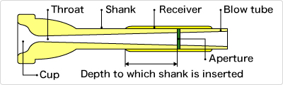 Cross-sectional diagram of the mouthpiece of a trumpet