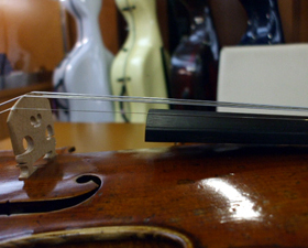 Strings on the violin