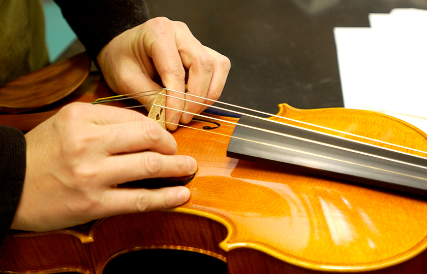 The bridge is installed while stringing the violin.