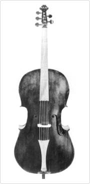 A violone