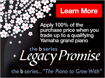 b series Legacy Promise