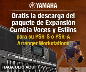 Kostenloses expansion pack cumbia f r psr s670 770 970 for Yamaha expansion pack