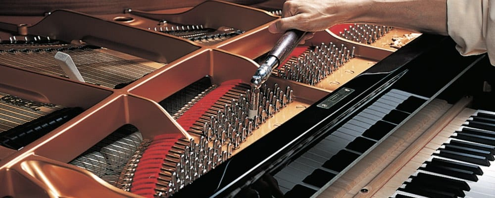 Someone is using a rachet tool to turn the pins that tighten or loosen the piano string in a grand piano.