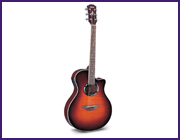 Yamaha Acoustic Guitars--Over 20 New Models