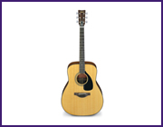 THE FG 40th Anniversary Acoustic Guitar