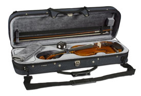 AV10SGE Electric Acoustic Violin
