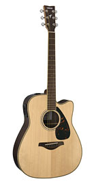 FGX730 Acoustic Guitar
