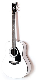 Dave Navarro Signature Acoustic Guitar